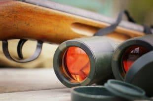 binoculars and shotgun